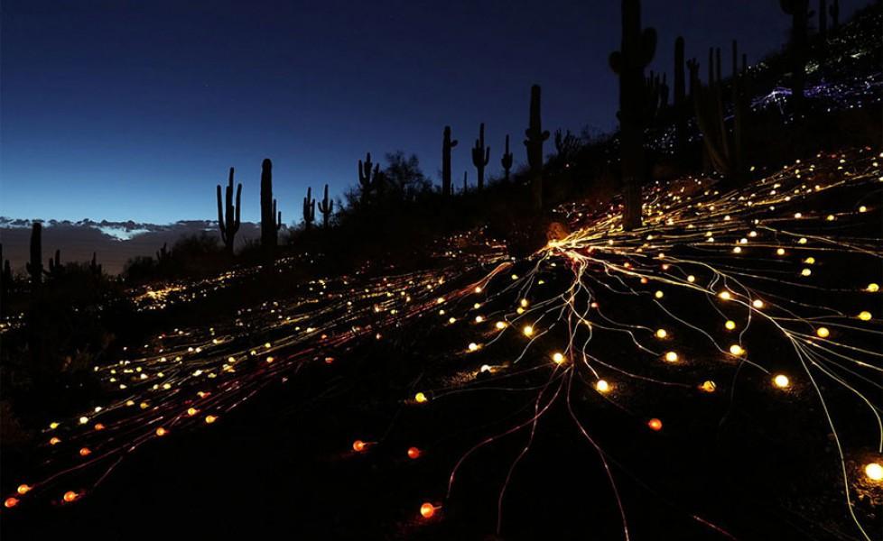 https://s3-eu-west-1.amazonaws.com/cdn.thepostinternazionale.it/files/uploads/surreal-light-installations-field-of-light-bruce-munro-uluru-australia-5orig_main.jpg