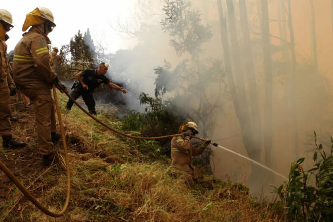 Incendi: Portogallo, distrutti 26mila ettari in 9 giorni