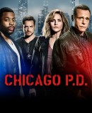 Truppenbild von ChicagoPD