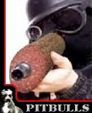 Benutzerbild von 5. Oberbefehlshaber Schlackwurst