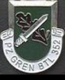 Truppenbild von PzGrenBtl352