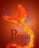 Truppenbild von Phönix