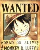 Benutzerbild von 5. Oberbefehlshaber Monkey D. Luffy