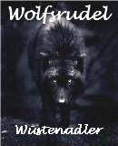 Benutzerbild von 1. Oberbefehlshaber Wustenadler