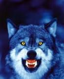 Truppenbild von Dogs_of_War