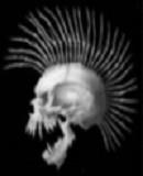 Benutzerbild von 5. Oberbefehlshaber skunker