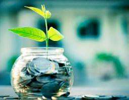 économies d'énergie, argent, plante