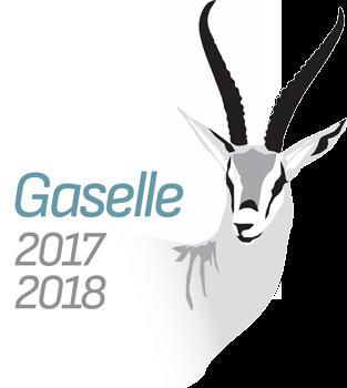 Gaselle-2017-og-2018.png?mtime=20190305101547#asset:244