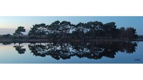 Hatchetts Pond