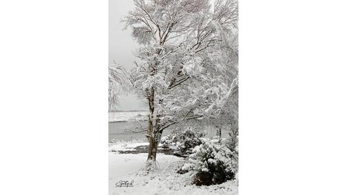Snow at Hatchetts Pond2
