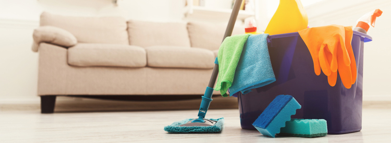 Domestic Cleaner Plymouth
