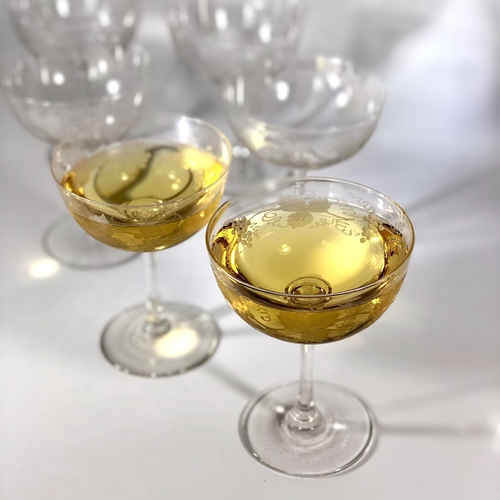 Edwardian vine etched champagne or cocktail coupes