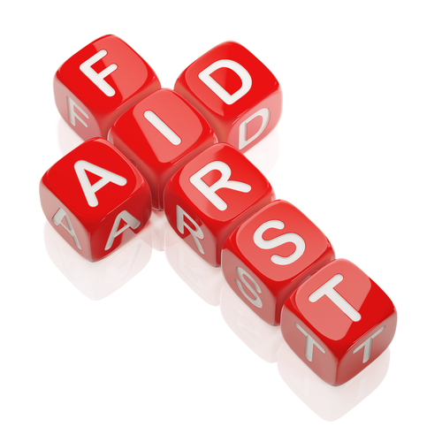 Adult Mental Health First Aid - 1 Day