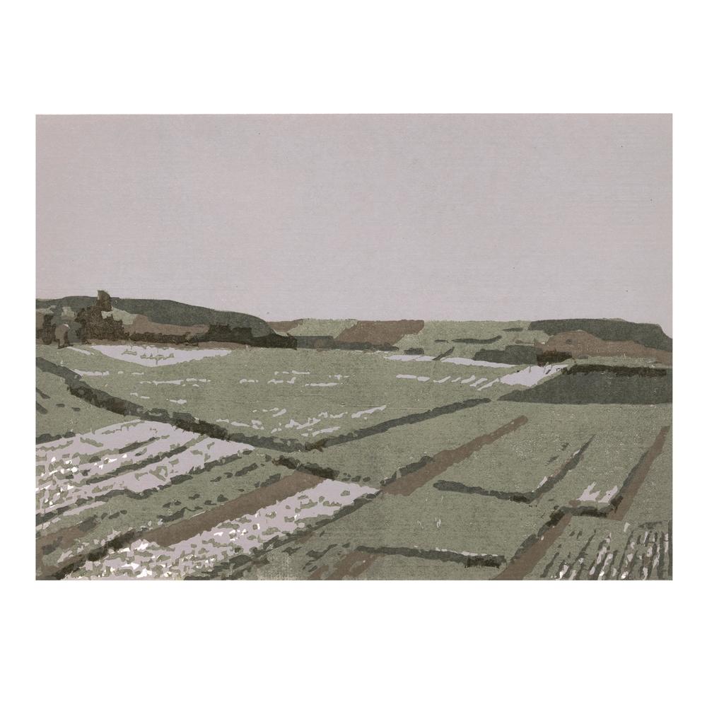 Black Soil Field