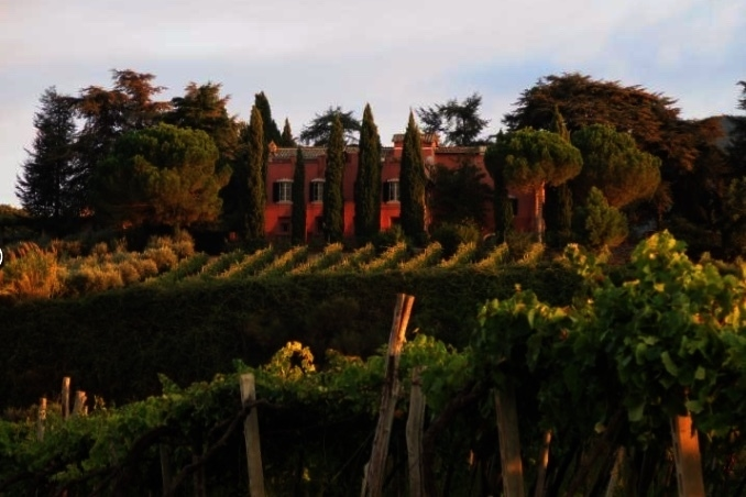 Private Vineyard Villa near Rome