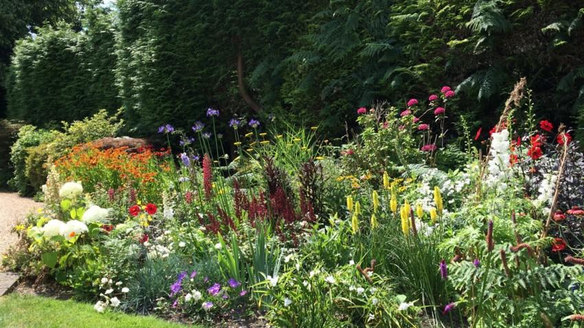 Garden development & planting