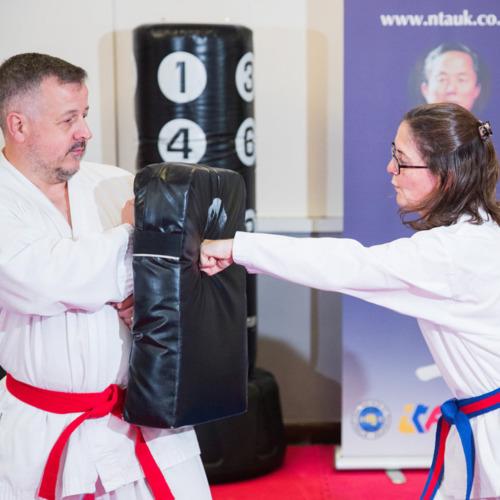 Martial Arts and Taekwondo