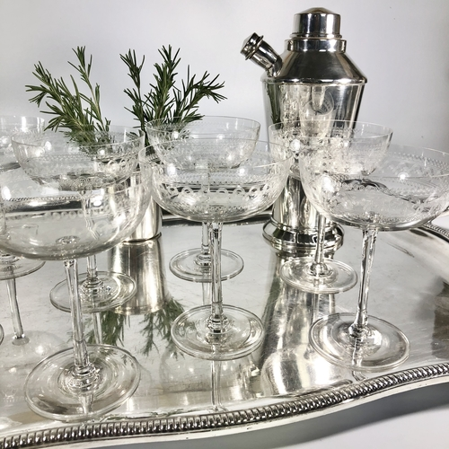 8 Victorian needle etched champagne saucers
