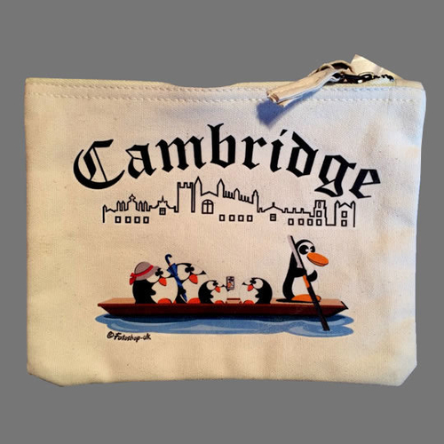 'Punting in Cambridge' Accessory Bag