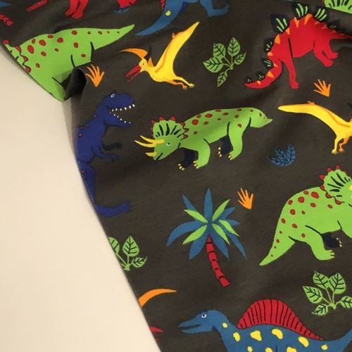 Jazzy Dinos Looped Back Jersey