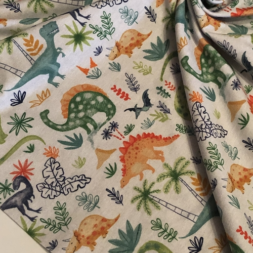 Dinos Adventure Jersey 88cm Remnant