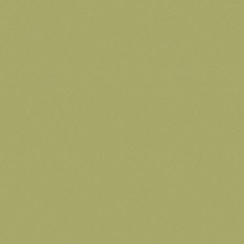 Avery Dennison® SWF 320 - Matt Metallic Yellow Green
