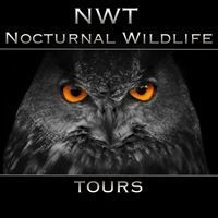 NWT Nocturnal Wildlife Tours