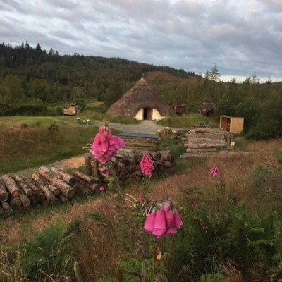Celtic Roundhouse with Foxglove Flowers in foreground