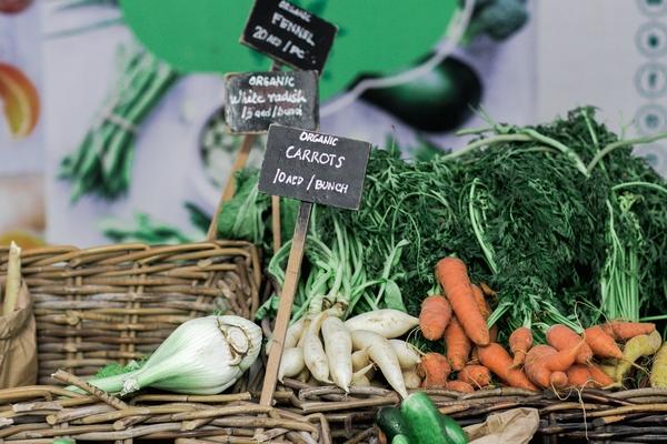 Benefit of organic food
