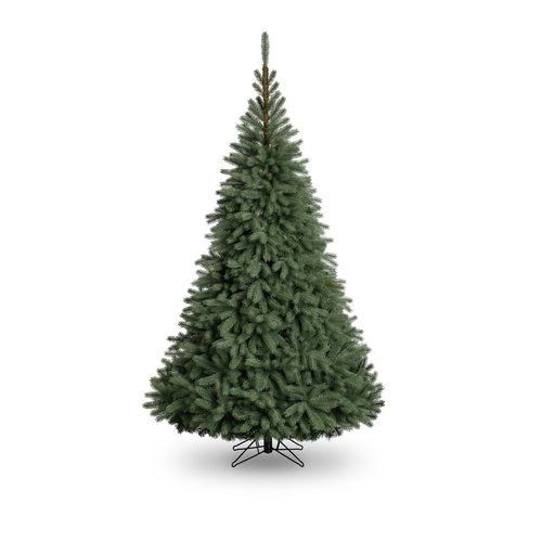5ft Blue Oregon Christmas Tree