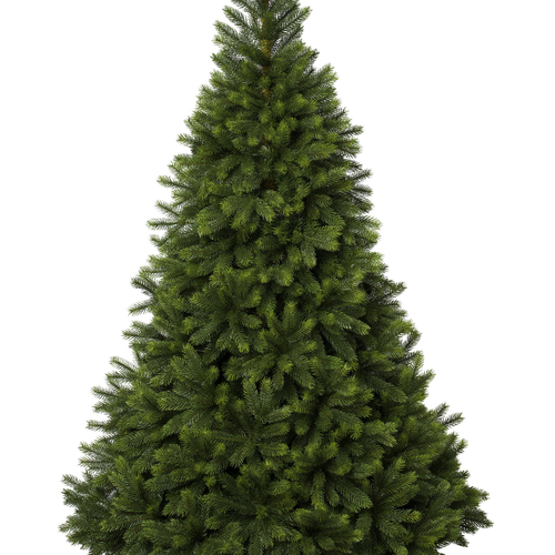 5ft Oregon Christmas Tree