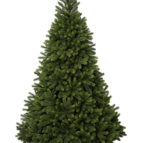 6Ft Oregon Christmas Tree