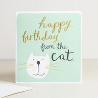 Happy Birthday From Cat