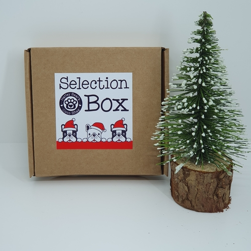 Selection Box - Regular