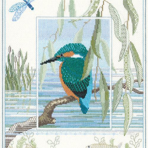 Wildlife - Kingfisher