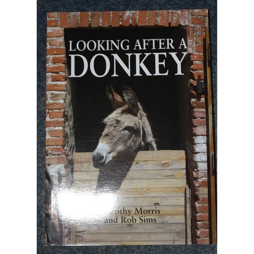 Looking After Your Donkey