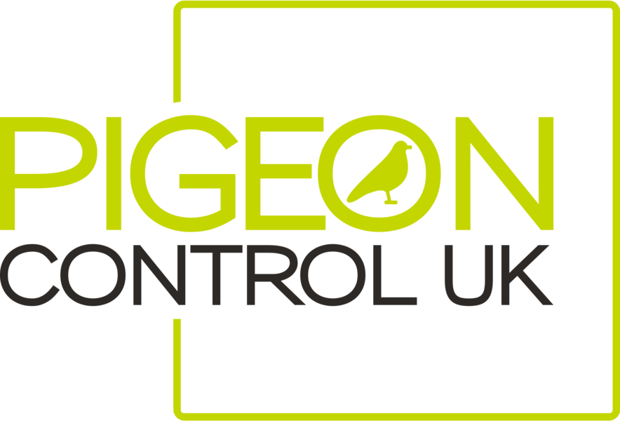 Pigeon Control UK | Pigeon control in Reading | Bird netting in Reading | Bird control in Berkshire