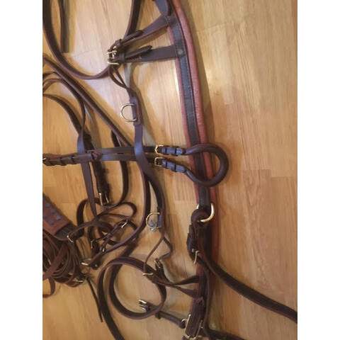Brown Pony Pair Harness (20210109)