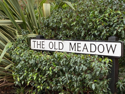 The Old Meadow