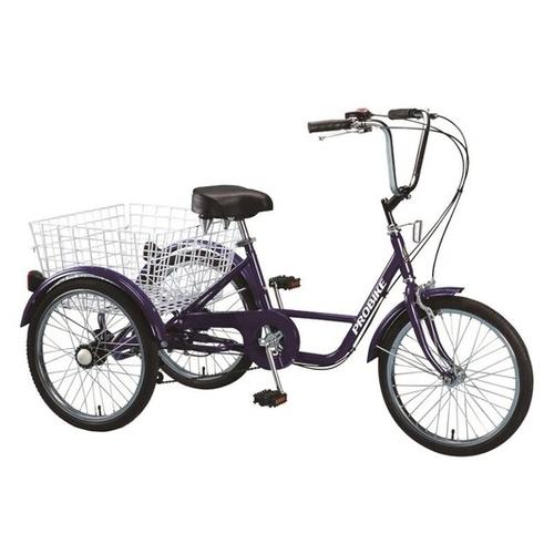 Kids & Adult Trikes