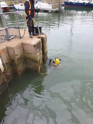 Commercial Dive Team Stop Logging Lock Gates