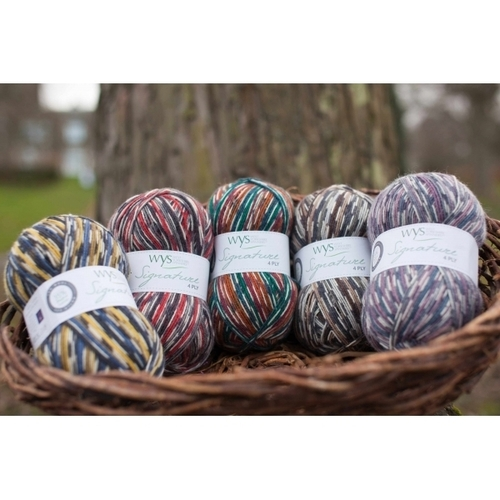WYSpinners 4ply Country Bird