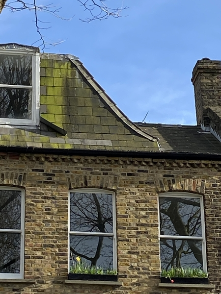 Should I get a structural survey done for a large flat?