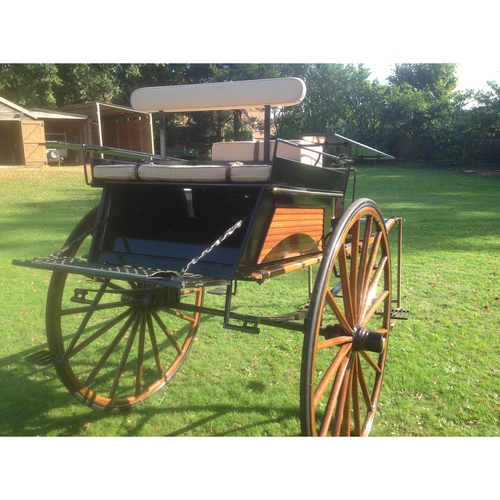 Original 1920 Dog Cart by McNaught - (20210325) New Advert March 2021