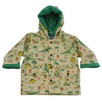 Raincoat Dinosaur