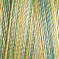 Cotton 30 - 4013