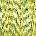 Cotton 30 - 4017