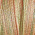 Cotton 30 - 4026