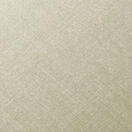 3M™ DI-NOC™ CH-1629 - Hairline Metal