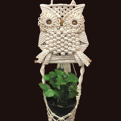 Owl Planter Kit